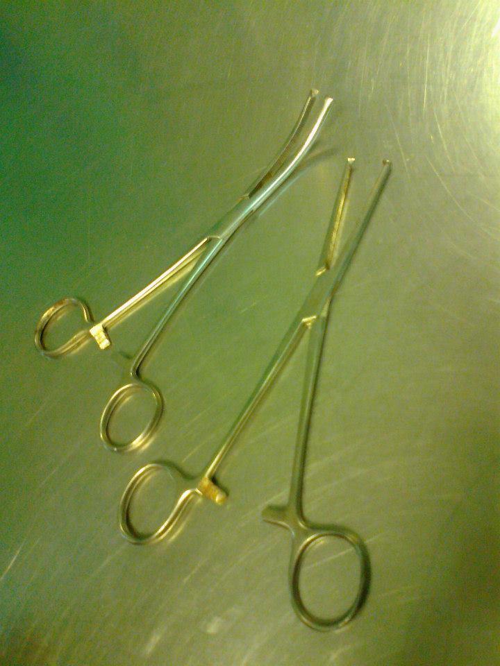Kocher's forceps