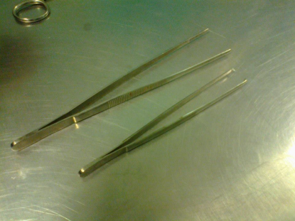 Plain and toothed forceps